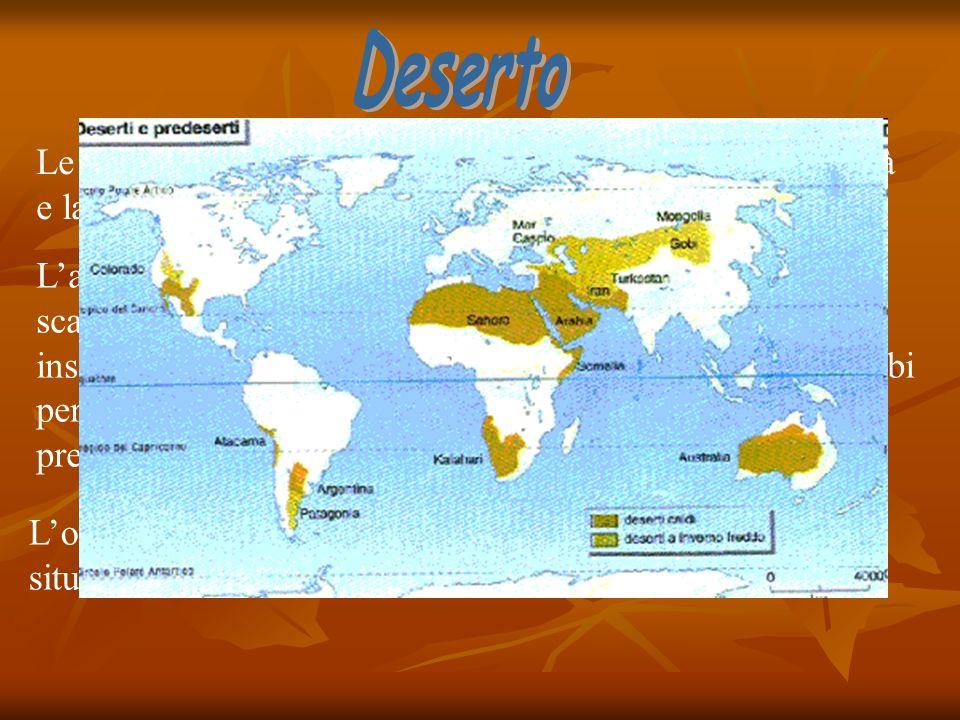 Le caratteristiche salienti del bioma sono lestrema aridità e la quasi totale assenza di vegetazione. Laridità è dovuta a un complesso di fattori, tra