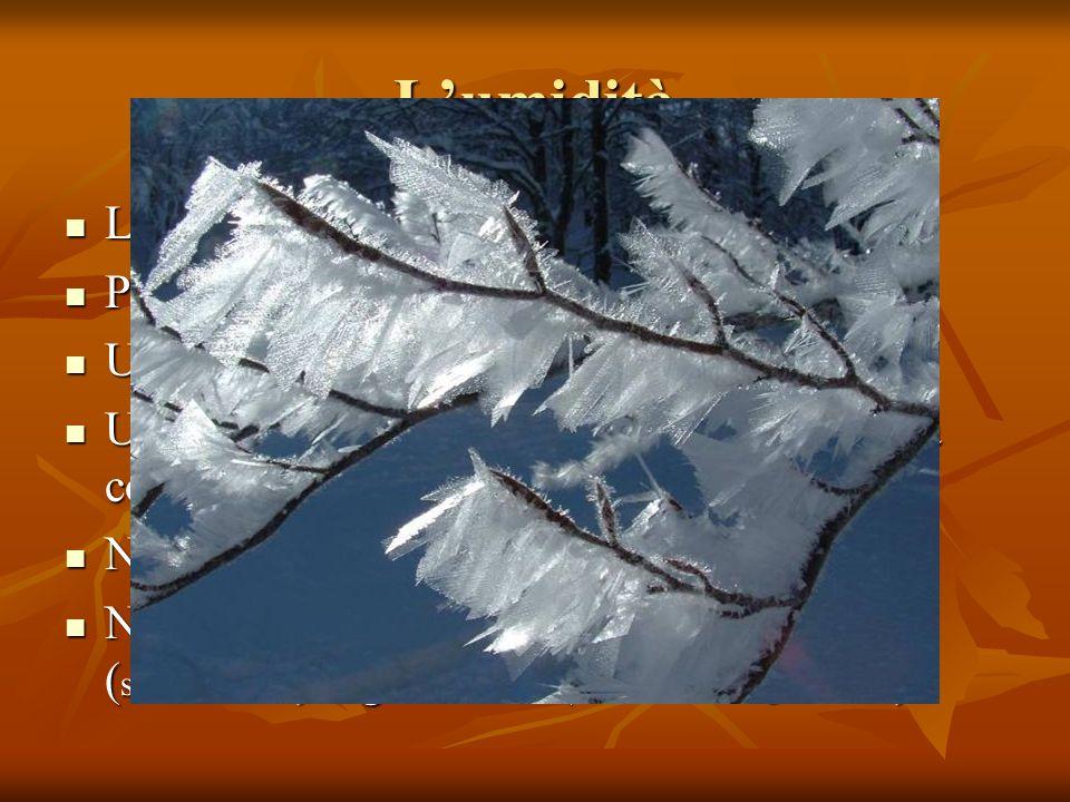 Le precipitazioni Le precipitazioni sono importanti sia per: Le precipitazioni sono importanti sia per: la quantità di acqua che cade durante lanno (piovosità annuale) la quantità di acqua che cade durante lanno (piovosità annuale) La forma con cui avvengono queste precipitazioni (neve, grandine, acqua) La forma con cui avvengono queste precipitazioni (neve, grandine, acqua) La loro distribuzione durante tutto lanno La loro distribuzione durante tutto lanno