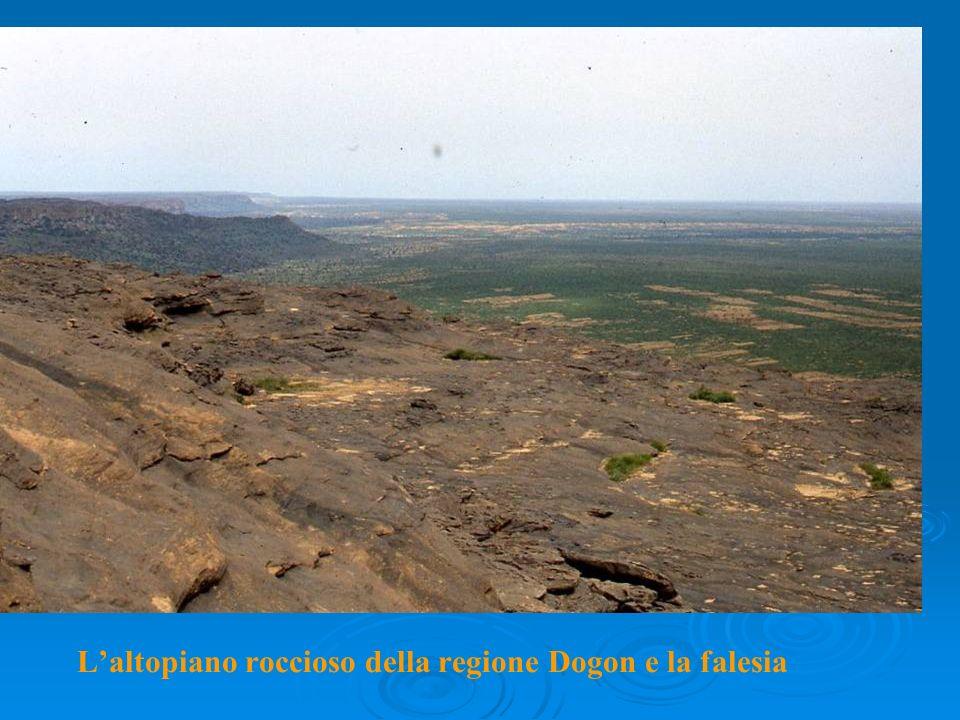 Laltopiano roccioso della regione Dogon e la falesia