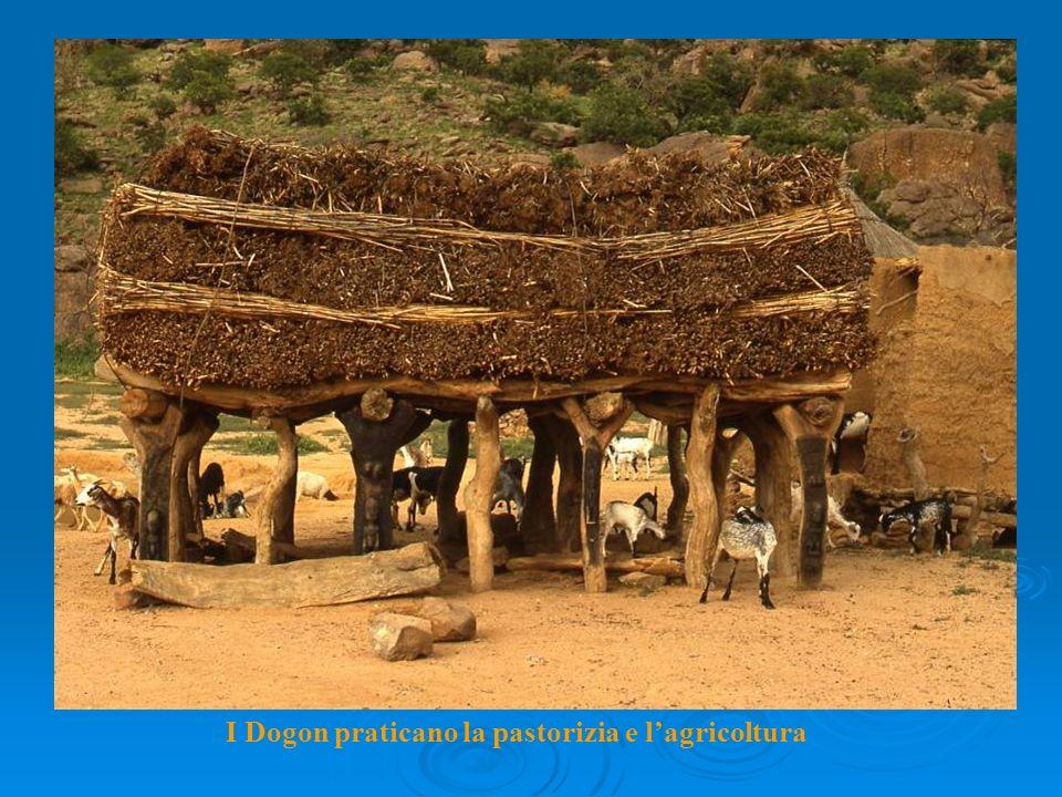 I Dogon praticano la pastorizia e lagricoltura