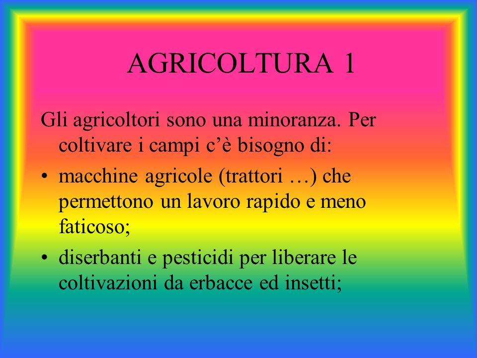 AGRICOLTURA 1 Gli agricoltori sono una minoranza. Per coltivare i campi cè bisogno di: macchine agricole (trattori …) che permettono un lavoro rapido
