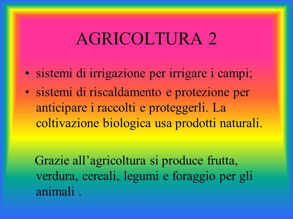AGRICOLTURA 2 sistemi di irrigazione per irrigare i campi; sistemi di riscaldamento e protezione per anticipare i raccolti e proteggerli. La coltivazi