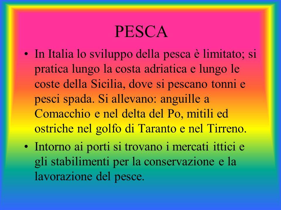 PESCA In Italia lo sviluppo della pesca è limitato; si pratica lungo la costa adriatica e lungo le coste della Sicilia, dove si pescano tonni e pesci