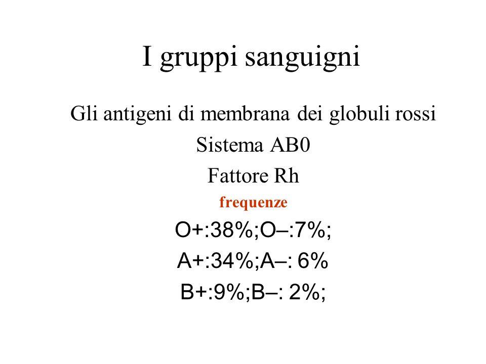 I gruppi sanguigni Gli antigeni di membrana dei globuli rossi Sistema AB0 Fattore Rh frequenze O+:38%;O–:7%; A+:34%;A–: 6% B+:9%;B–: 2%;