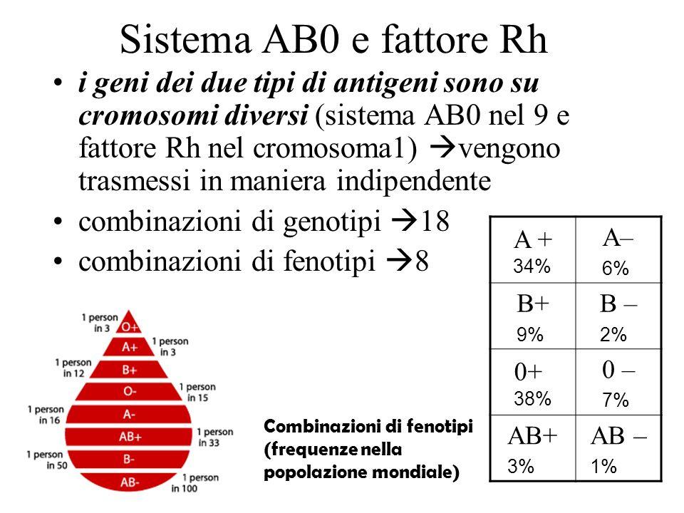 Sistema AB0 e fattore Rh i geni dei due tipi di antigeni sono su cromosomi diversi (sistema AB0 nel 9 e fattore Rh nel cromosoma1) vengono trasmessi i
