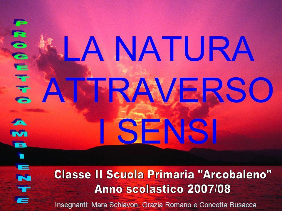 LA NATURA ATTRAVERSO I SENSI Insegnanti: Mara Schiavon, Grazia Romano e Concetta Busacca