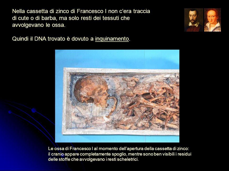 Nella cassetta di zinco di Francesco I non cera traccia di cute o di barba, ma solo resti dei tessuti che avvolgevano le ossa. Quindi il DNA trovato è