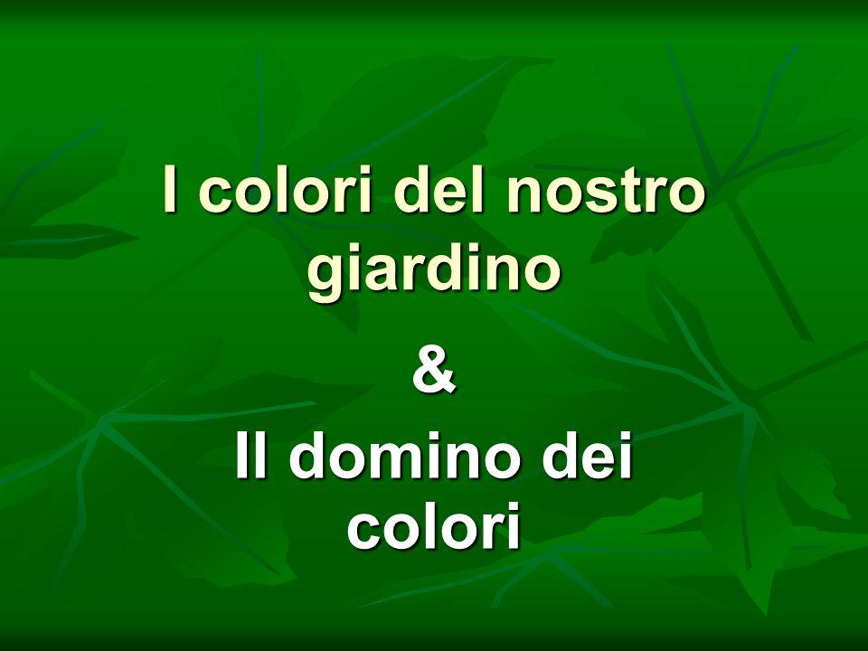 I colori del nostro giardino & Il domino dei colori