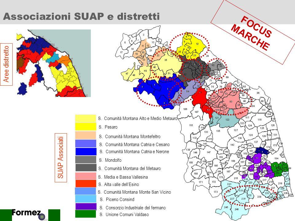 19 Le logiche dellassociazionismo Al fine di delineare quanto peso abbia il sistema distrettuale nelle strategie degli SUAP associati, per la regione