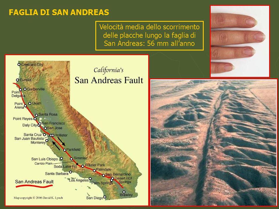 FAGLIA DI SAN ANDREAS Velocità media dello scorrimento delle placche lungo la faglia di San Andreas: 56 mm allanno