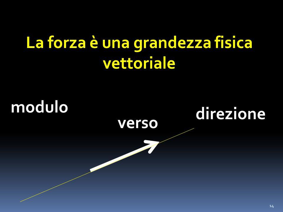 14 La forza è una grandezza fisica vettoriale modulo direzione verso