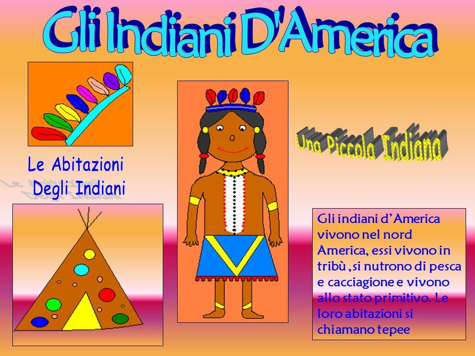 Gli indiani dAmerica vivono nel nord America, essi vivono in tribù,si nutrono di pesca e cacciagione e vivono allo stato primitivo. Le loro abitazioni