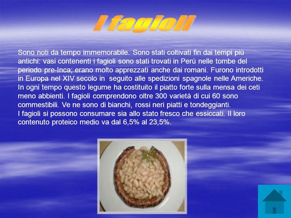 La lenticchia fu uno dei primi alimenti coltivati e consumati dalluomo.