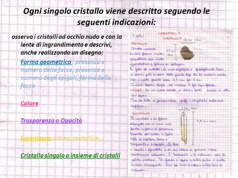 Ogni singolo cristallo viene descritto seguendo le seguenti indicazioni: osserva i cristalli ad occhio nudo e con la lente di ingrandimento e descrivi