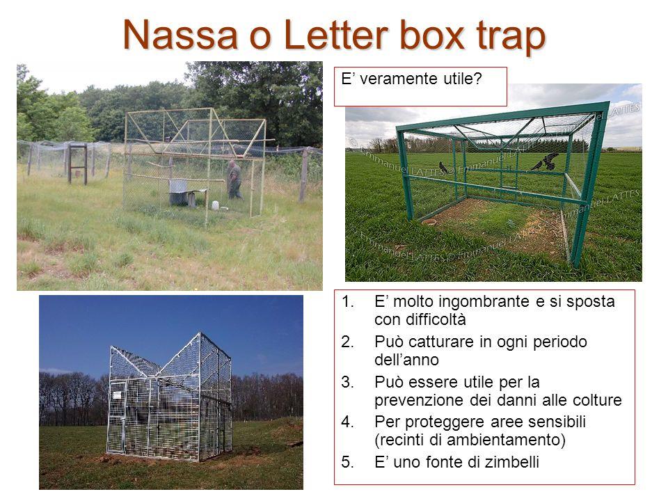 Nassa o Letter box trap 1.E molto ingombrante e si sposta con difficoltà 2.Può catturare in ogni periodo dellanno 3.Può essere utile per la prevenzion