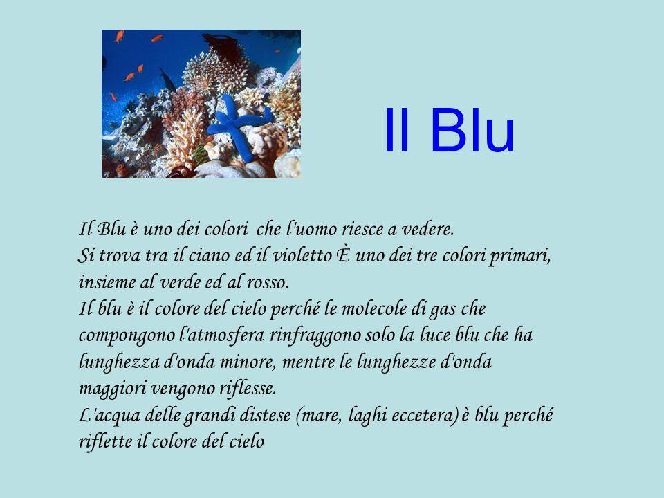 Il Blu Il Blu è uno dei colori che l'uomo riesce a vedere. Si trova tra il ciano ed il violetto È uno dei tre colori primari, insieme al verde ed al r
