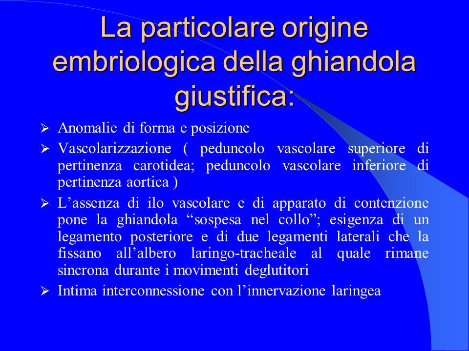 La particolare origine embriologica della ghiandola giustifica: Anomalie di forma e posizione Vascolarizzazione ( peduncolo vascolare superiore di per