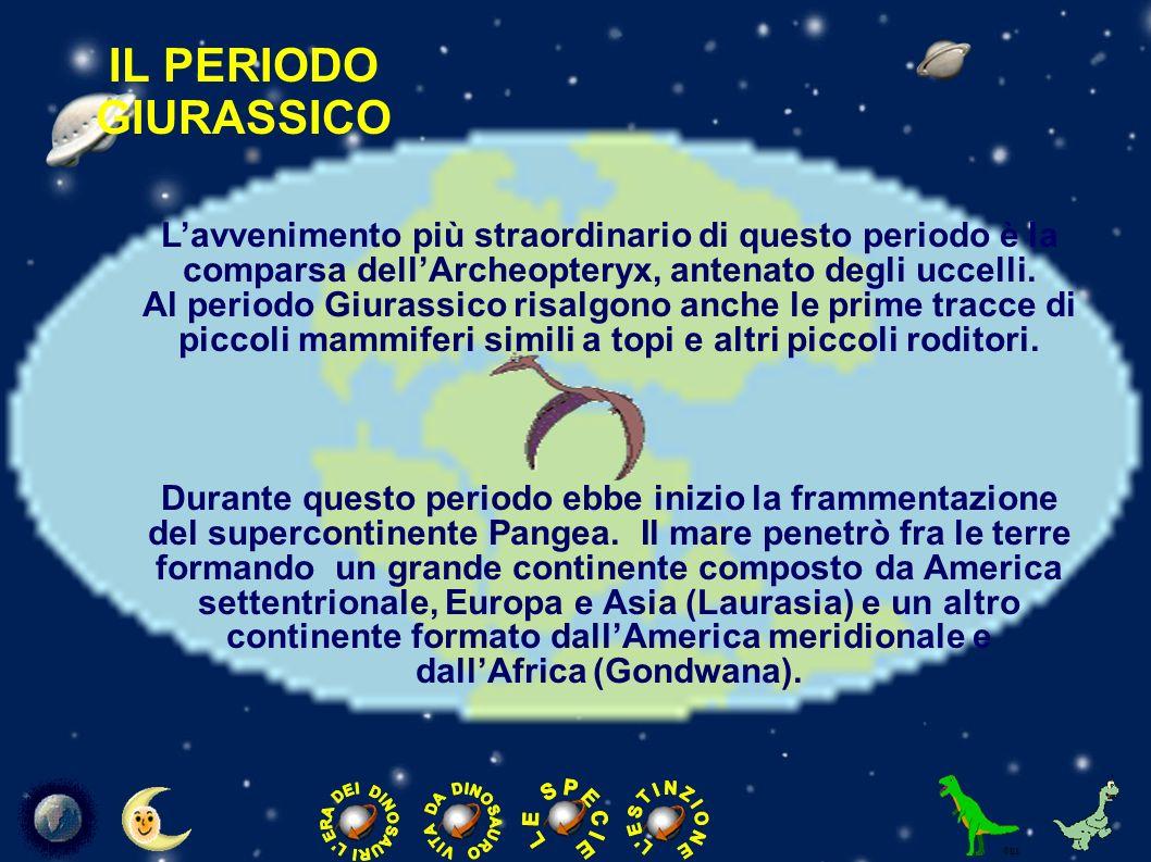IL PERIODO CRETACEO Il periodo Cretaceo è l ultimo periodo in cui è divisa l era Mesozoica.