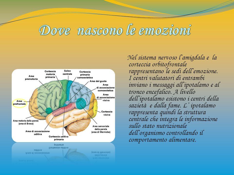 Nel sistema nervoso lamigdala e la corteccia orbitofrontale rappresentano le sedi dellemozione. I centri valutatori di entrambi inviano i messaggi all