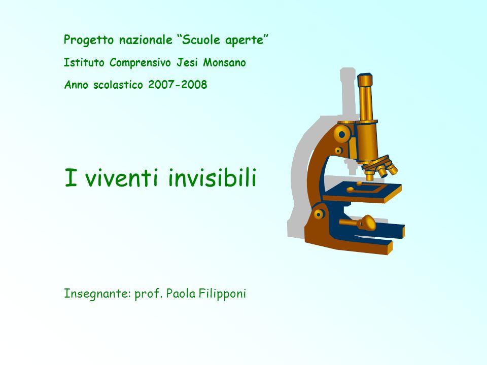 Invisibile è ciò che è molto piccolo, ma anche ciò che non si è abituati ad osservare.