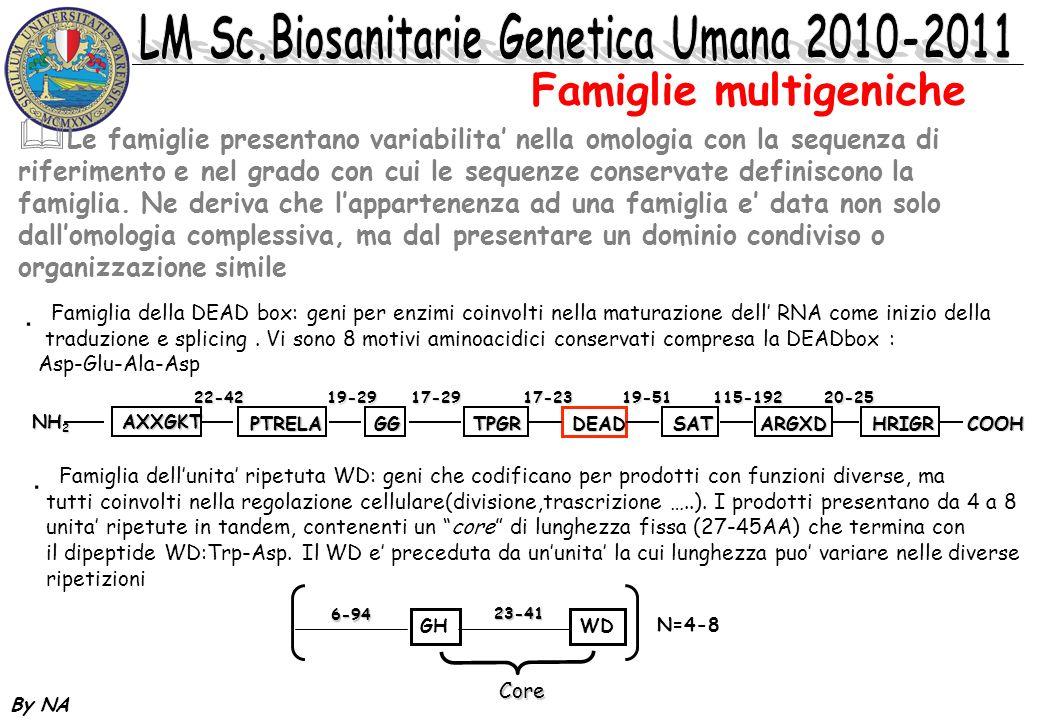By NA Le famiglie presentano variabilita nella omologia con la sequenza di riferimento e nel grado con cui le sequenze conservate definiscono la famig