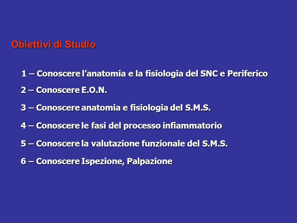 Obiettivi di Studio 1 – Conoscere lanatomia e la fisiologia del SNC e Periferico 2 – Conoscere E.O.N. 2 – Conoscere E.O.N. 3 – Conoscere anatomia e fi