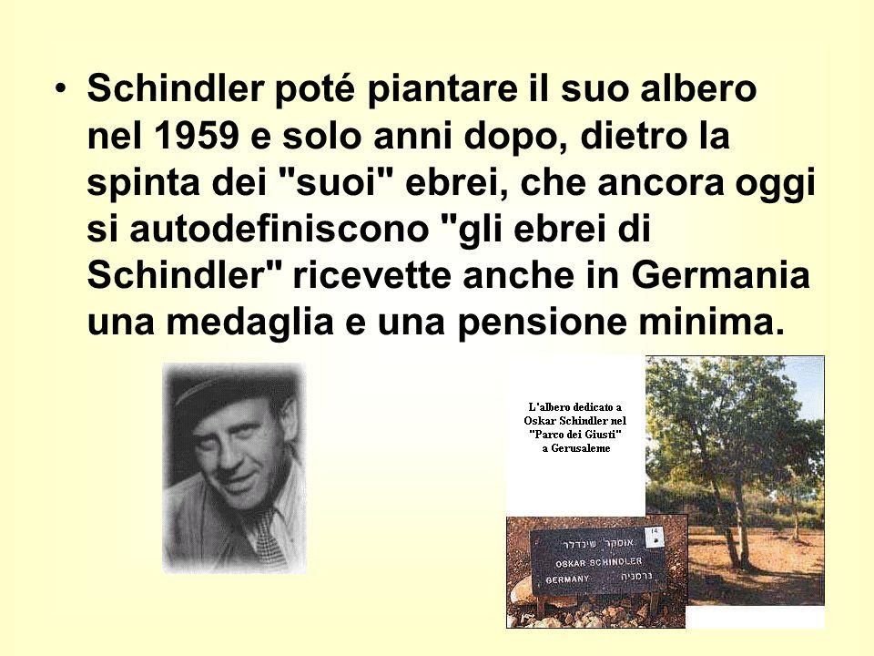 Schindler poté piantare il suo albero nel 1959 e solo anni dopo, dietro la spinta dei