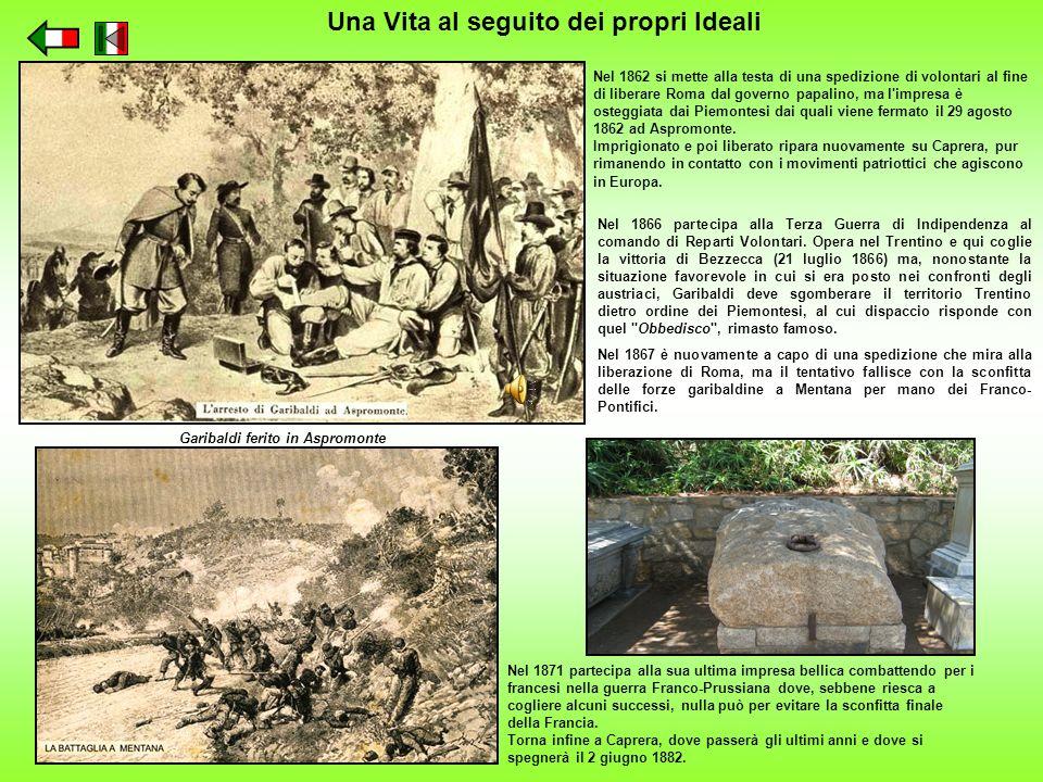 Nel 1862 si mette alla testa di una spedizione di volontari al fine di liberare Roma dal governo papalino, ma l'impresa è osteggiata dai Piemontesi da