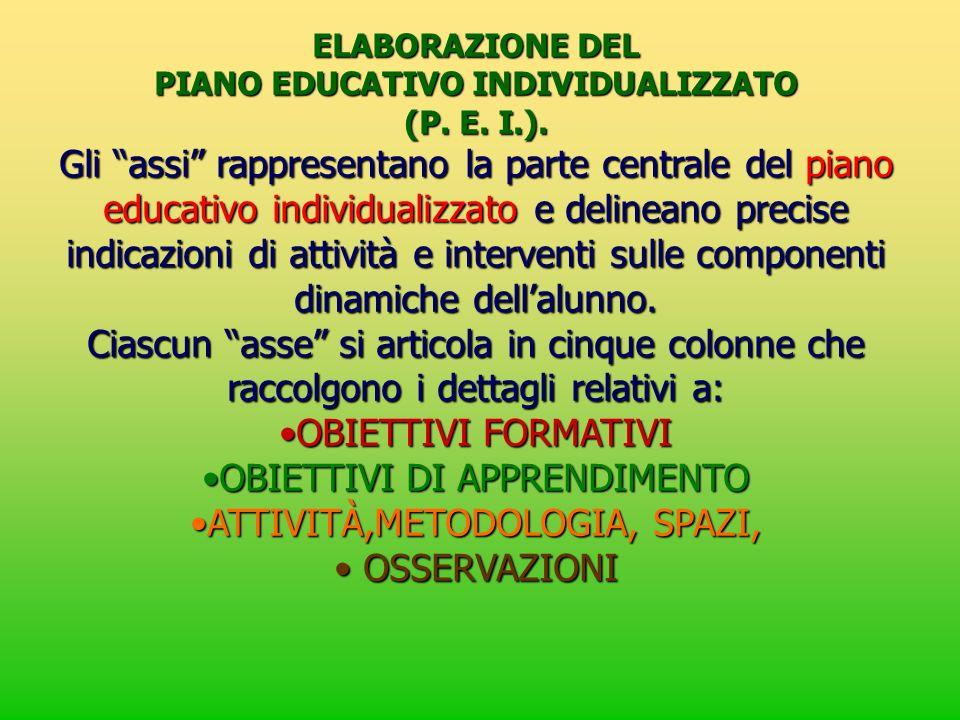 ELABORAZIONE DEL PIANO EDUCATIVO INDIVIDUALIZZATO (P. E. I.). Gli assi rappresentano la parte centrale del piano educativo individualizzato e delinean