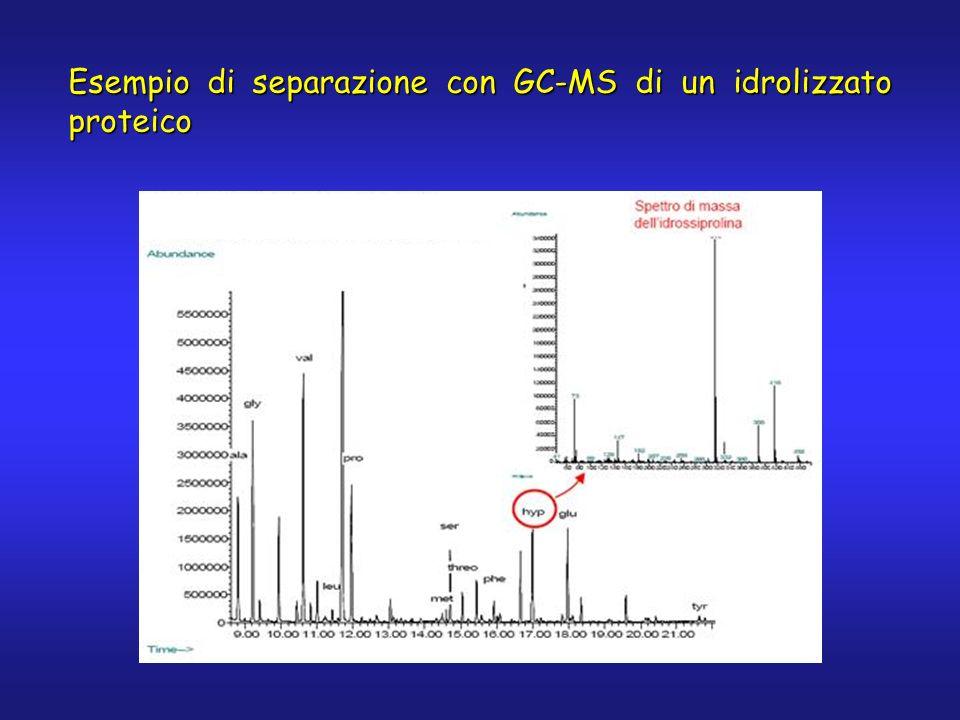 Esempio di separazione con GC-MS di un idrolizzato proteico