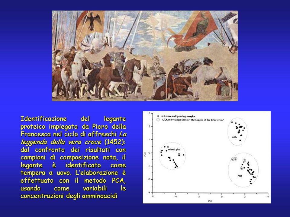 Identificazione del legante proteico impiegato da Piero della Francesca nel ciclo di affreschi La leggenda della vera croce (1452): dal confronto dei