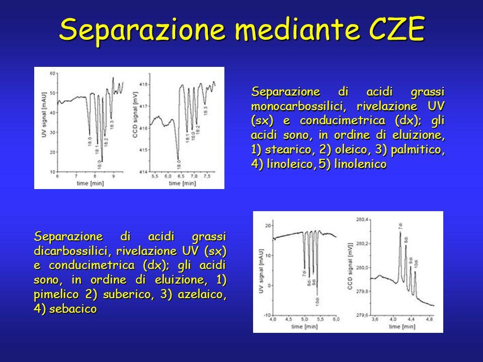 Separazione mediante CZE Separazione di acidi grassi monocarbossilici, rivelazione UV (sx) e conducimetrica (dx); gli acidi sono, in ordine di eluizio
