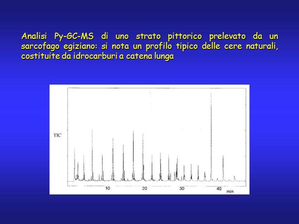 Analisi Py-GC-MS di uno strato pittorico prelevato da un sarcofago egiziano: si nota un profilo tipico delle cere naturali, costituite da idrocarburi