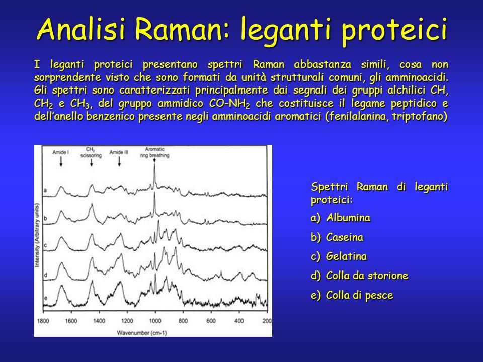 Analisi Raman: leganti proteici I leganti proteici presentano spettri Raman abbastanza simili, cosa non sorprendente visto che sono formati da unità s