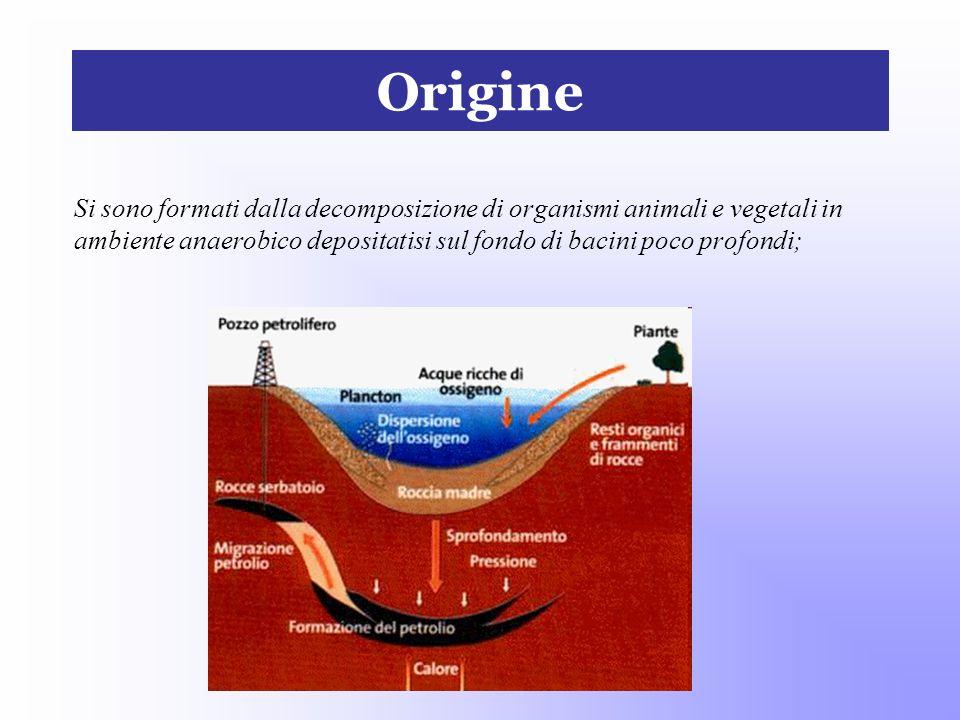 Origine Si sono formati dalla decomposizione di organismi animali e vegetali in ambiente anaerobico depositatisi sul fondo di bacini poco profondi;