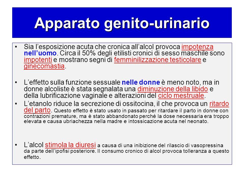 Apparato genito-urinario Sia lesposizione acuta che cronica allalcol provoca impotenza nelluomo. Circa il 50% degli etilisti cronici di sesso maschile