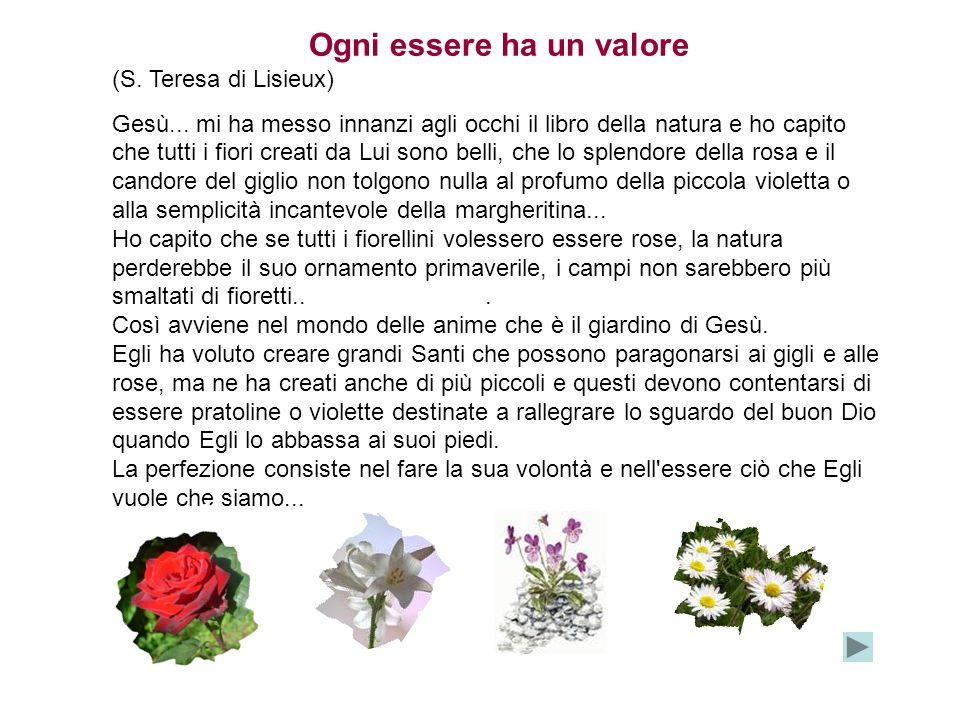 Ogni essere ha un valore (S. Teresa di Lisieux) Gesù... mi ha messo innanzi agli occhi il libro della natura e ho capito che tutti i fiori creati da L