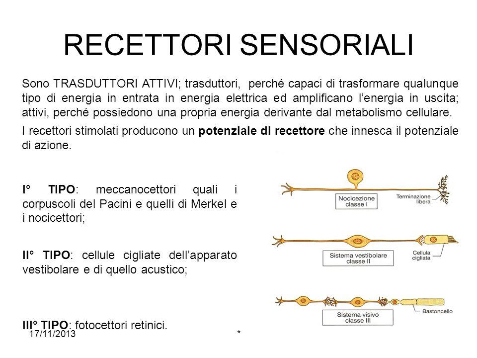 17/11/2013* Classificazione dei recettori in base alla loro localizzazione ESTEROCETTORI: sensibili a stimoli provenienti dallesterno, per cui sono localizzati sulla superficie dellorganismo (tutti i recettori cutanei, della retina, dellorecchio interno e della mucosa nasale).