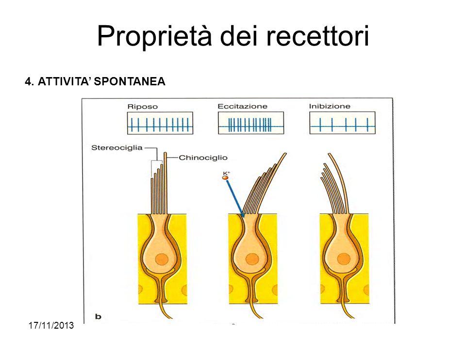 17/11/2013* Processo sensoriale TRASDUZIONE DELLO STIMOLO: processo di trasformazione dellenergia dello stimolo da parte del recettore CODIFICAZIONE NERVOSA: processo mediante il quale le informazioni relative allo stimolo vengono rappresentate in una serie di potenziali dazione.