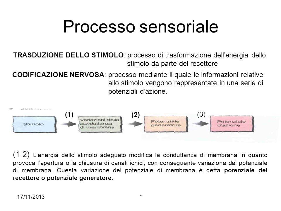 17/11/2013* Legge delle energie sensoriali specifiche: la capacità di codificare la modalità di uno stimolo è una proprietà delle fibre nervose sensoriali ed è legata al tipo di energia dello stimolo.