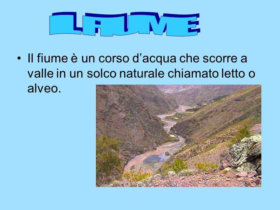 Il fiume è un corso dacqua che scorre a valle in un solco naturale chiamato letto o alveo.
