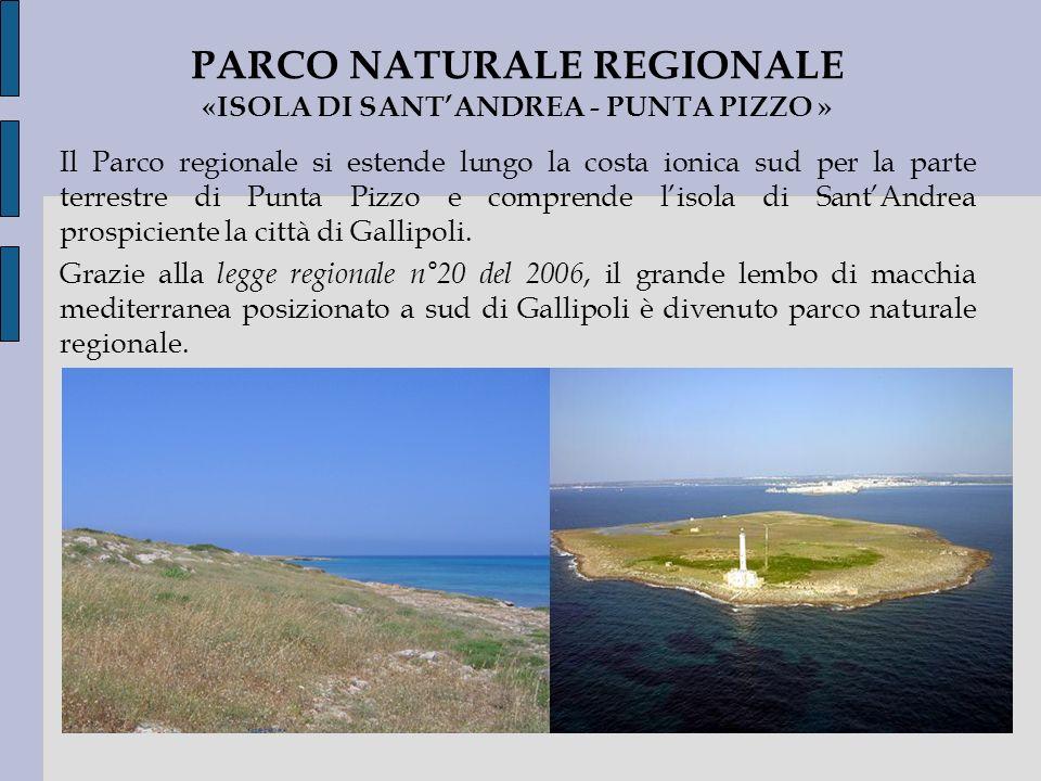 Il Parco regionale si estende lungo la costa ionica sud per la parte terrestre di Punta Pizzo e comprende lisola di SantAndrea prospiciente la città d