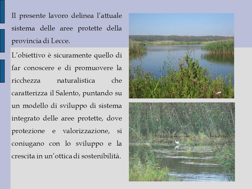 Il presente lavoro delinea lattuale sistema delle aree protette della provincia di Lecce. Lobiettivo è sicuramente quello di far conoscere e di promuo