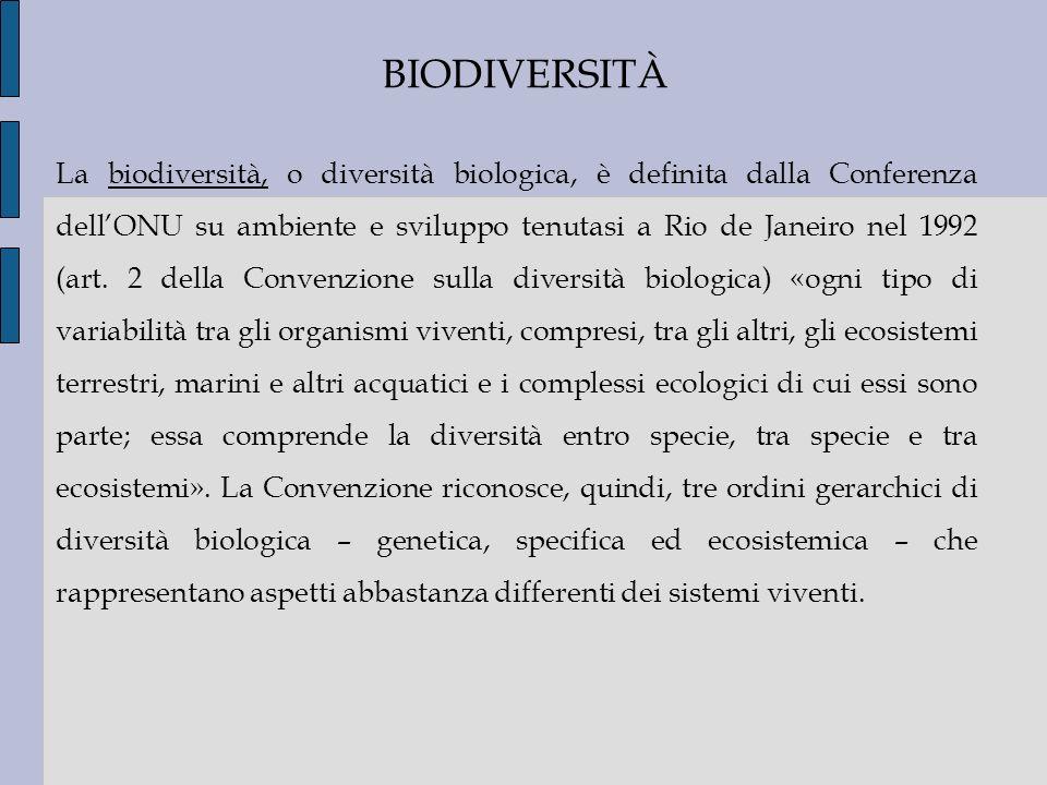 BIODIVERSITÀ La biodiversità, o diversità biologica, è definita dalla Conferenza dellONU su ambiente e sviluppo tenutasi a Rio de Janeiro nel 1992 (ar