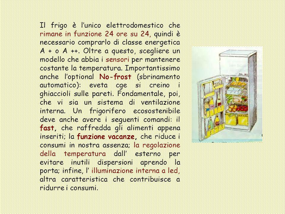 Frigorifero Il frigo è lunico elettrodomestico che rimane in funzione 24 ore su 24, quindi è necessario comprarlo di classe energetica A + o A ++. Olt