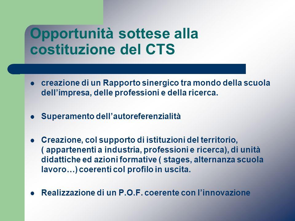 Opportunità sottese alla costituzione del CTS creazione di un Rapporto sinergico tra mondo della scuola dellimpresa, delle professioni e della ricerca