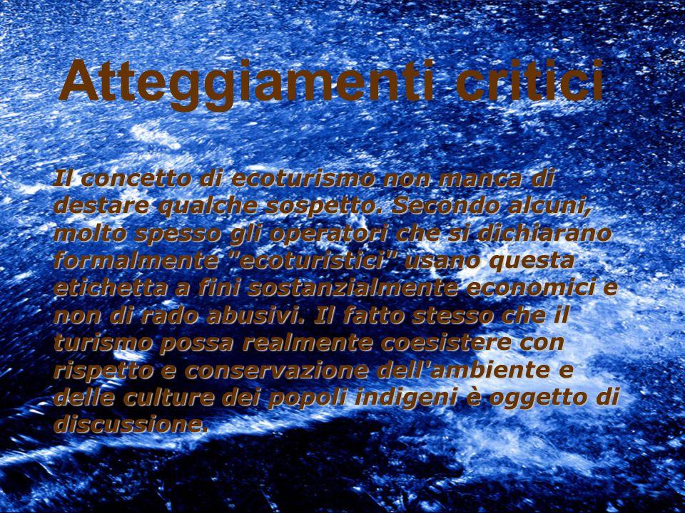 IMPATTI DEL TURISMO Positivi: Protezione del patrimonio culturale e naturale Sviluppo delleconomia Opportunità di lavoro Negativi: Sfruttamento del lavoro minorile Danno ambientale Disuguaglianza delle ricchezze di distribuzione