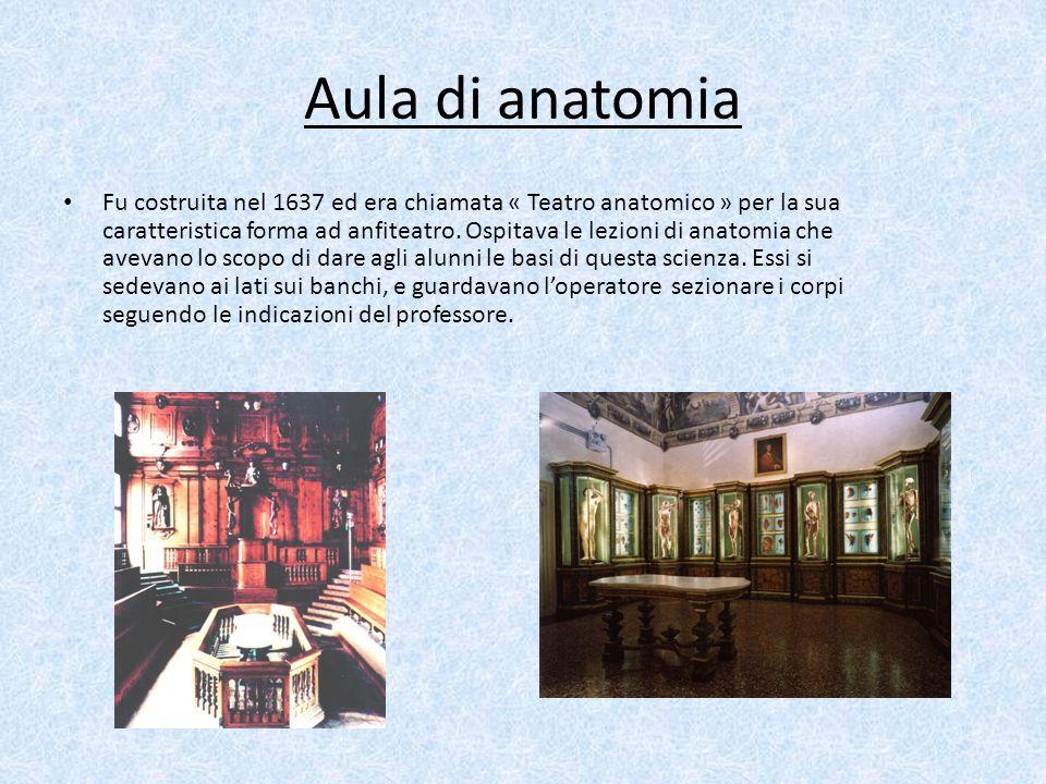 Aula di anatomia Fu costruita nel 1637 ed era chiamata « Teatro anatomico » per la sua caratteristica forma ad anfiteatro. Ospitava le lezioni di anat