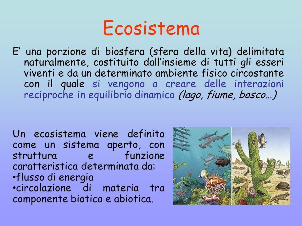 Ecosistema E una porzione di biosfera (sfera della vita) delimitata naturalmente, costituito dallinsieme di tutti gli esseri viventi e da un determina
