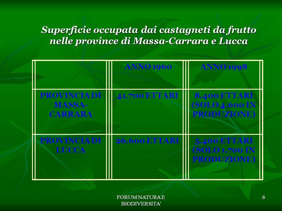 FORUM NATURA E BIODIVERSITA' 6 Superficie occupata dai castagneti da frutto nelle province di Massa-Carrara e Lucca ANNO 1960ANNO 1998 PROVINCIA DI MA